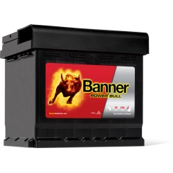 BATTERIE BANNER Power Bull 12V 50AH 450A P5003