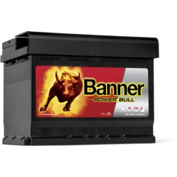 BATTERIE BANNER Power Bull 12V 60AH 540A