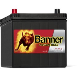 BATTERIE BANNER Power Bull P6069 12V 60AH 510A